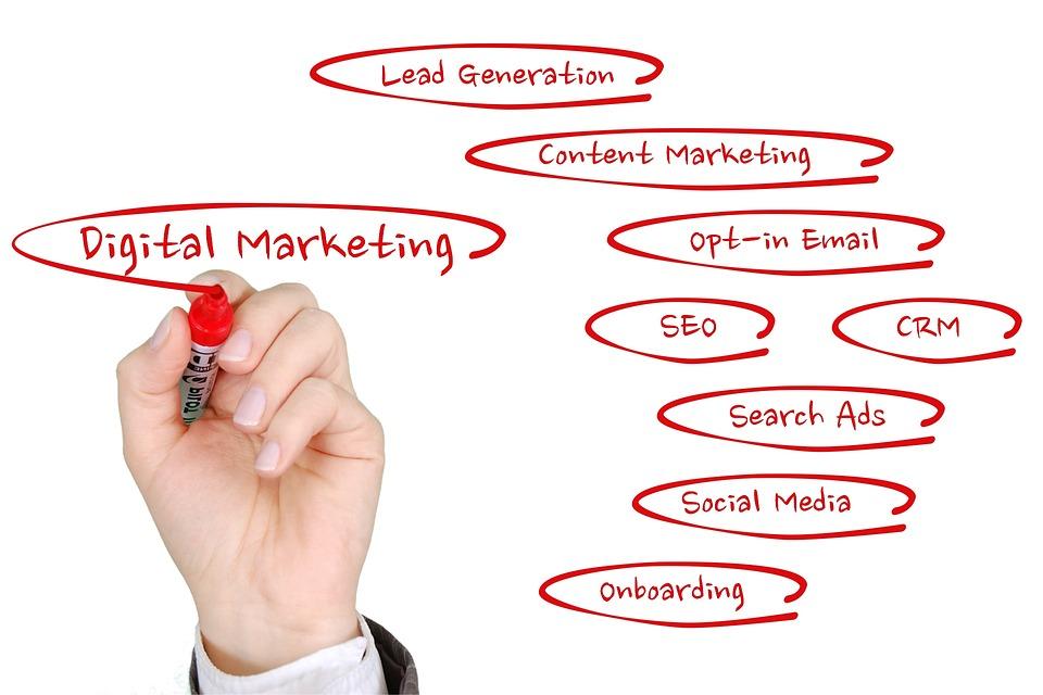 Статистики на успешни практики от дигиталния маркетинг